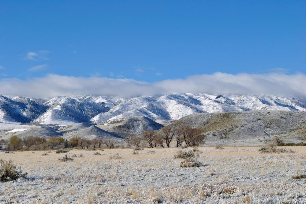 Wyoming Spring Snows