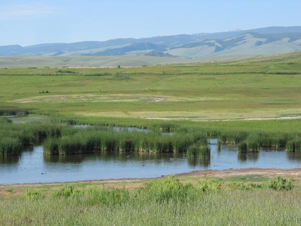 Wyoming_wetlands